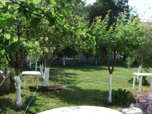 Der etwa 1.000 qm große Garten ist ideal zum Fußballspielen.