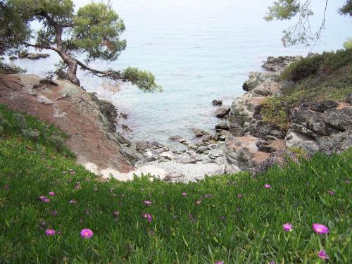 Kleine Felsbucht bei Neos Marmaras, die ideal zum schnorcheln ist.