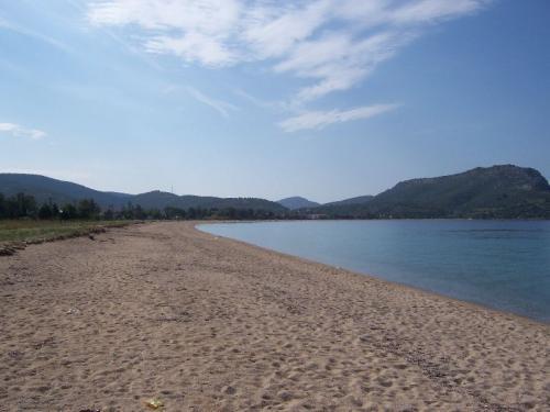 Blick nach links am Sandstrand von Toroni.