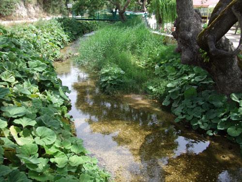 Dieser kleine - im Mai noch munter plätschernde - Fluss mündet im nörlichen Teil des Karavostasi Beach ins Meer