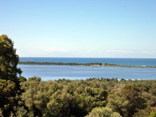 Blick vom oberen Stockwerk in Richtung Lagune III.