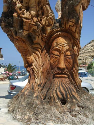 Der Olivenbaum.