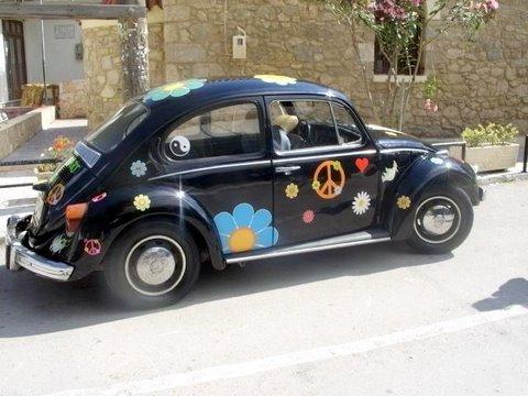 Beetle.