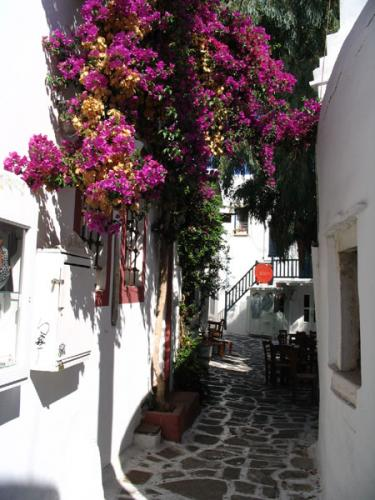 Gasse in Naoussa