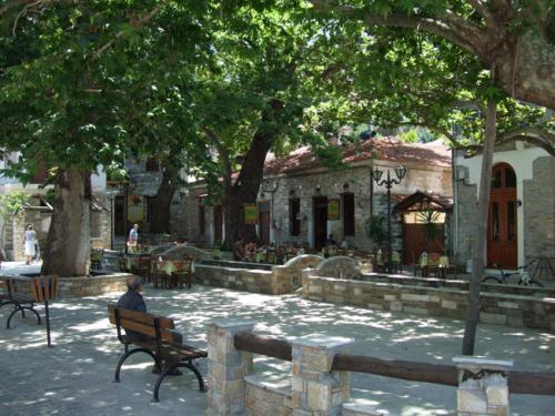 Das Zentrum des öffentlichen Lebens von Afissos - Die Platanengesäumte und von einem Bach unterquerte Platia des Dorfes.
