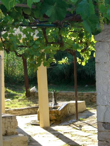 Beim Spazierengehen kommt man ab und an an kleinen Brunnen, wie diesem hier, vorbei.