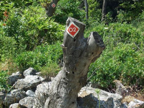 Europäischer Wanderweg o2 (welcher nur hartgesottenen Wanderern zu empfehlen ist).