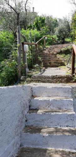 Diese Treppe führt hoch zur Straße.