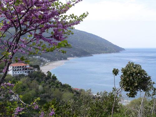 Ansicht Richtung Strand
