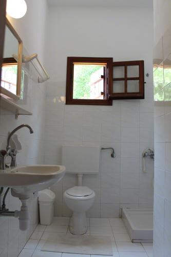 2-Zimmer-Apartment - Einfaches Bad mit Dusche, WC und Waschbecken