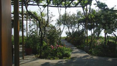 Der zum Meer führende Teil des Gartens.