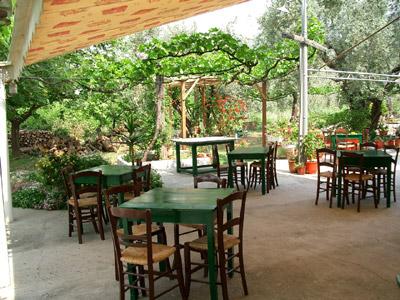 Die Terrasse des Restaurant Rodia.