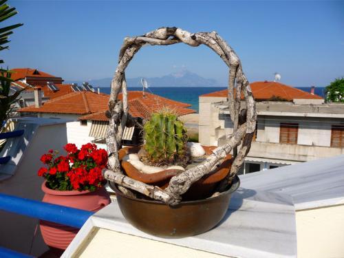 Deko auf dem Dach der Villa Anesa.