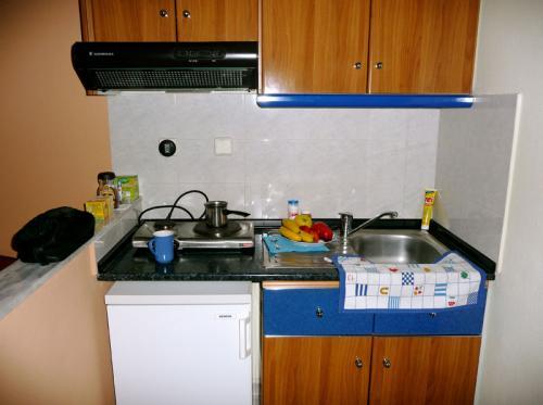 Küchenzeile in einer der Ferienwohnungen der Villa Anesa